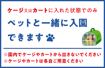We can enter a kindergarten with pet only in state that we classified into cage or cart. ※Please do not provide from cage and cart in garden. ※Please offer cage and cart by each person.